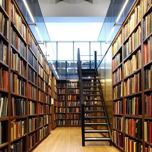 Библиотеки Дедовска